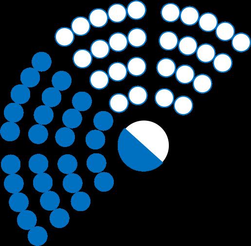 Mitglied Jugendparlament Kanton Zürich